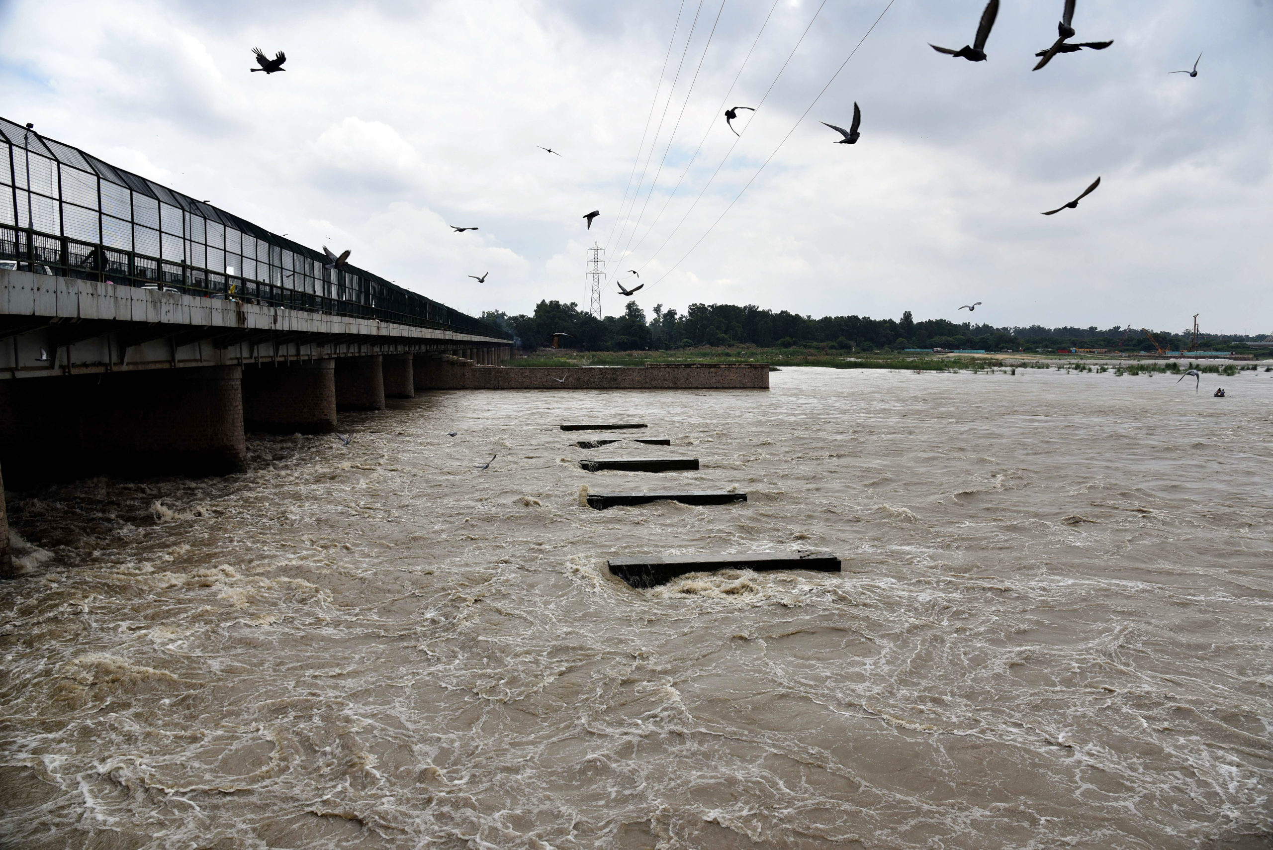 Delhi: Water level in Yamuna rises; over 100 families moved to safer areas